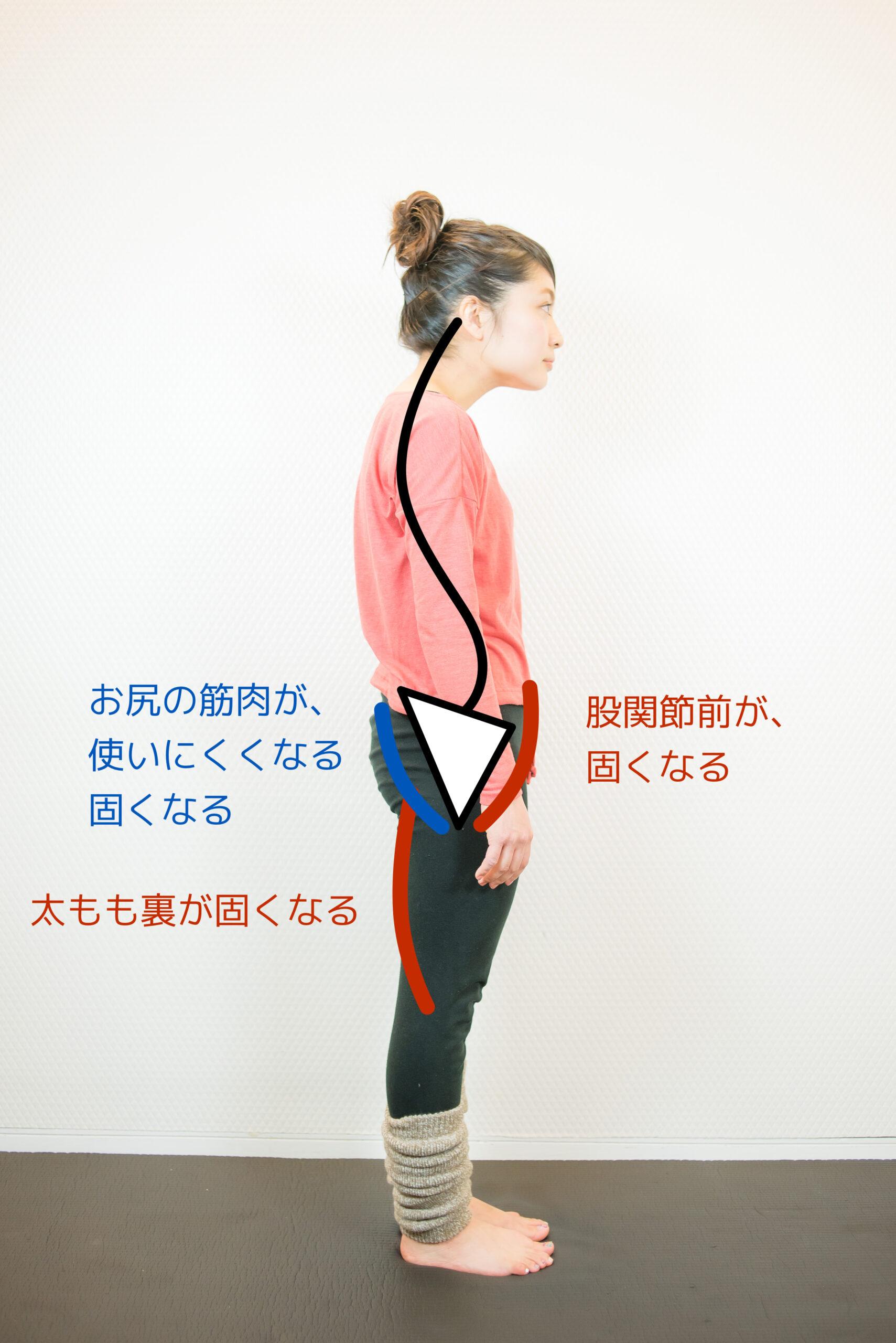 姿勢不良により股関節まわりの固くなる場所