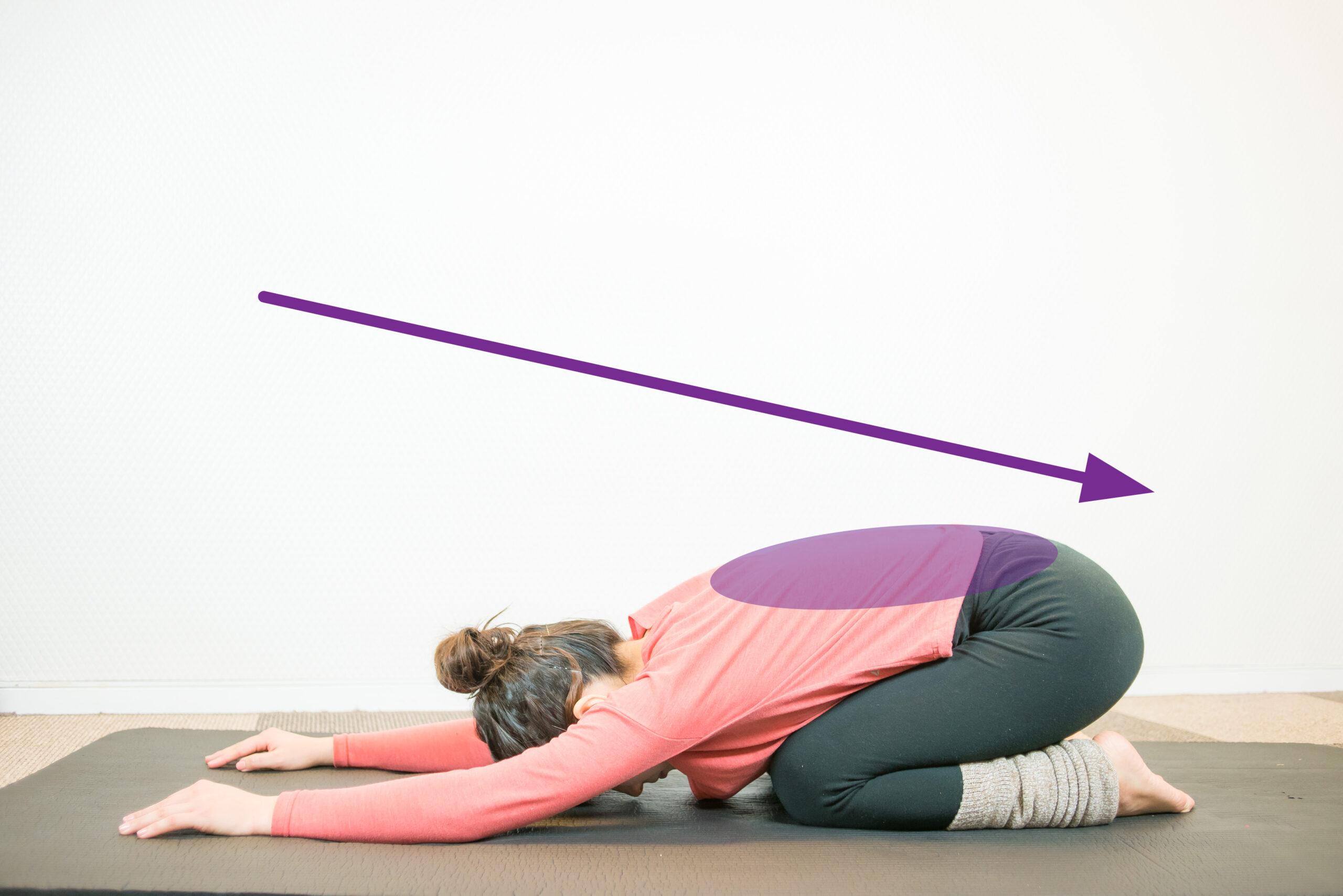 脊柱起立筋群のストレッチ